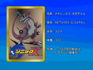 Sonic X karta 110