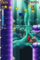 Coralcave.3