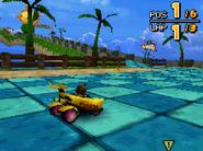 Monkey Target DS 17