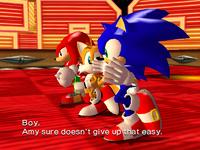 Team Sonic1