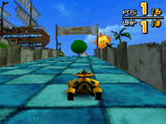 Monkey Target DS 19