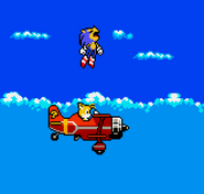 Sky Chase Pocket 01
