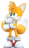 TSR story Tails 2