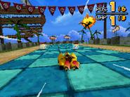 Monkey Target DS 20