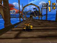 Monkey Target DS 25