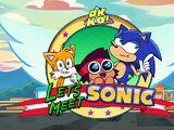 Let's Meet Sonic/Gallery