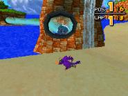 Ocean Ruin DS 28