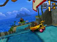 Monkey Target DS 23