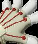 SF Hands 081