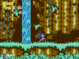 Sonic the Hedgehog 3 & Knuckles/Glitches