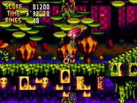 Charmy about to get squashed by Knuckles. 06