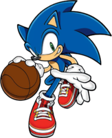 MSG 2D C Sonic 14