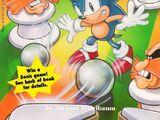 Sonic the Hedgehog: Friend or Foe?