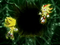 Super Shadow i Super Sonic blackhole ep 64