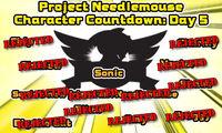 Project needlemouse final day.jpg