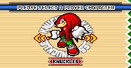 Sonic Advance 3 menu 6