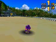 Ocean Ruin DS 33