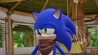 SB S1E08 Sonic unamused