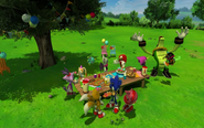 Sonic Birthday Party 1