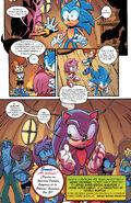 Sonic the Hedgehog 265-015