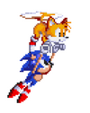 StH Sonic & Tails (old sprite).png