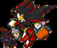 Sonic Channel - Shadow the Hedgehog & Dark Chao 2013