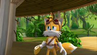 SB S1E08 Tails cookie