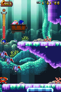 Coral Cave Act 2 24