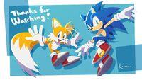TGS 2020 Karasuno Sonic Tails