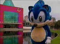 Sonic disfraz 2