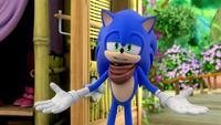 S1E41 Sonic