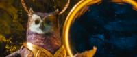 Longclaw Ring portal