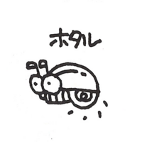 Sketch-Flasher-I