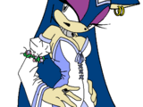 Lady Nimue Raven-Claw the Hedgehog