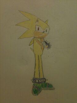 Striker the Hedgehog.jpg