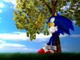 Sonic Dimensions/Story