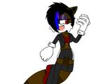 Rylee the Raccoon