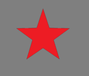 Grey Party Flag.png