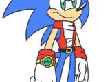 Sonic D. Hedgehog