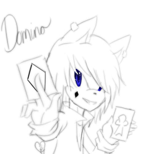 Domino the Quoll