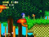 Zona Mushroom Hill