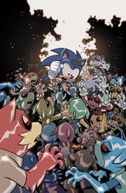 IDW-Publishing Sonic-the-Hedgehog 20 Couverture B.jpg
