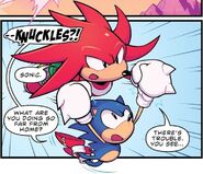 Knuckles rattrape Sonic