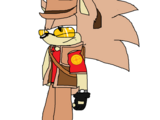 Sniper The Hedgehog
