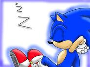 Sonic sleeping