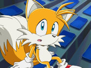 010tails