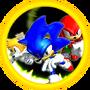 SonicWiki-Experte
