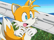 Tails 41