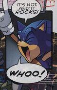 Sonic 656535