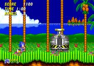 Sonic 2 Kapsel